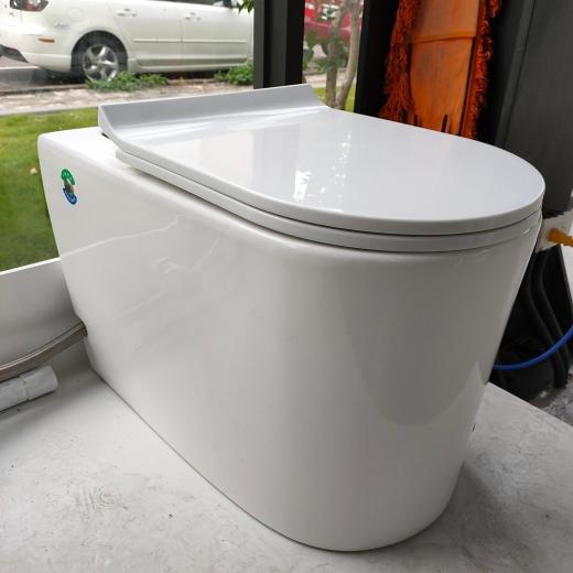 單體馬桶 (無水箱)